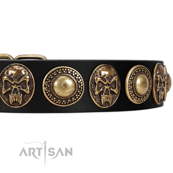 Full grain leather dog collar with studs for easy wearing