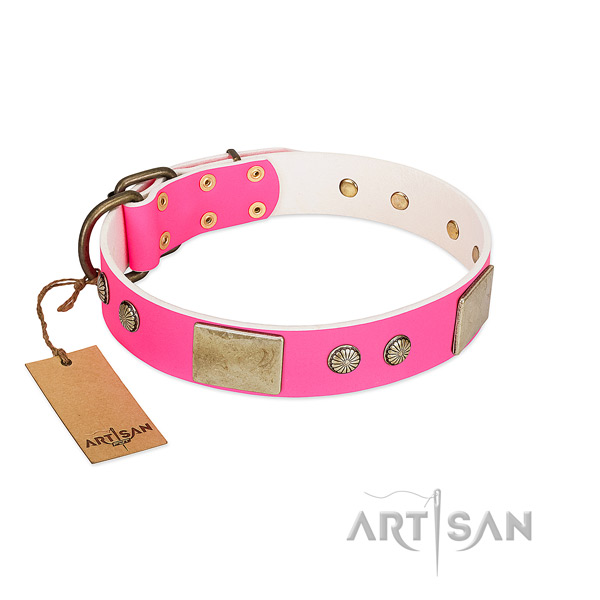 Easy wearing full grain leather dog collar for walking your doggie