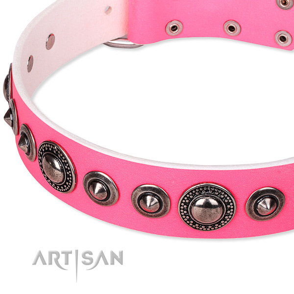 Everyday use embellished dog collar of durable full grain genuine leather