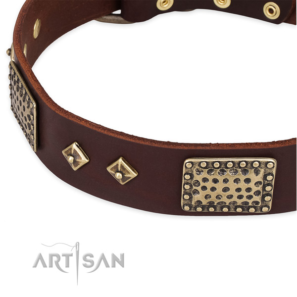 Durable decorations on full grain leather dog collar for your canine