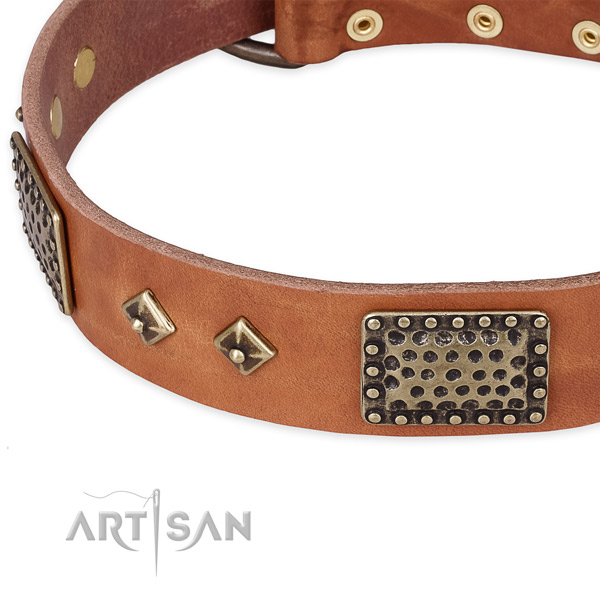Durable fittings on full grain genuine leather dog collar for your canine