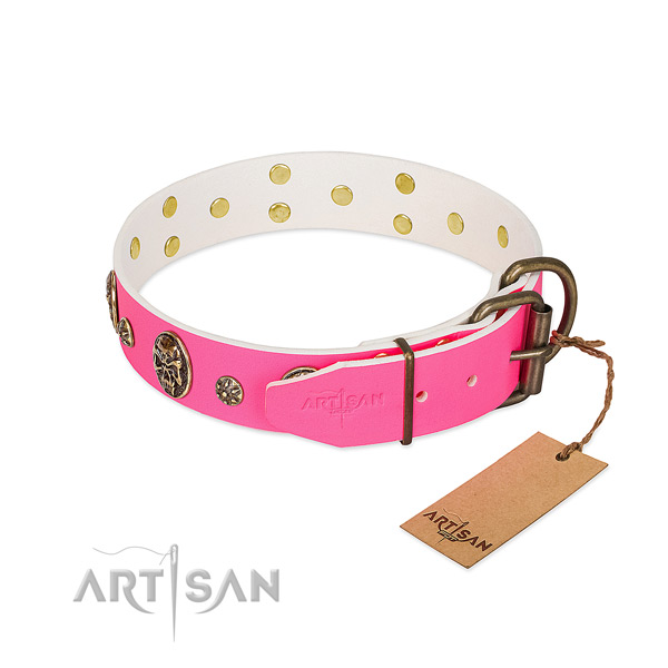 Corrosion proof buckle on full grain natural leather collar for stylish walking your doggie