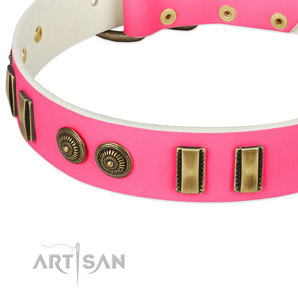 Durable traditional buckle on leather dog collar for your pet