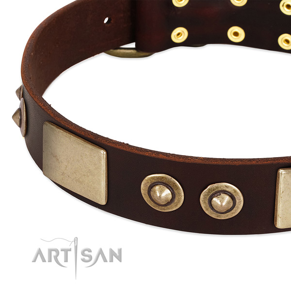 Strong buckle on genuine leather dog collar for your dog