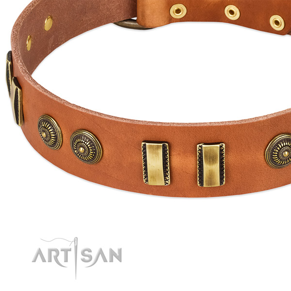 Corrosion resistant adornments on leather dog collar for your canine