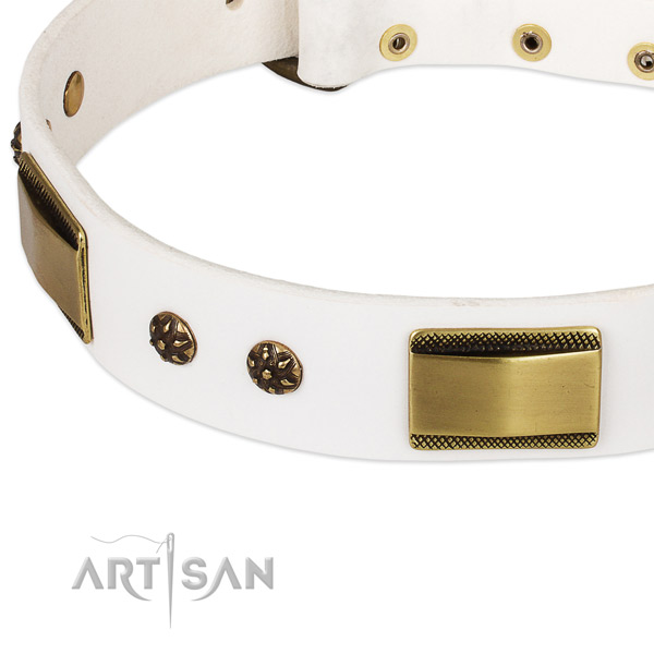Durable buckle on full grain natural leather dog collar for your canine