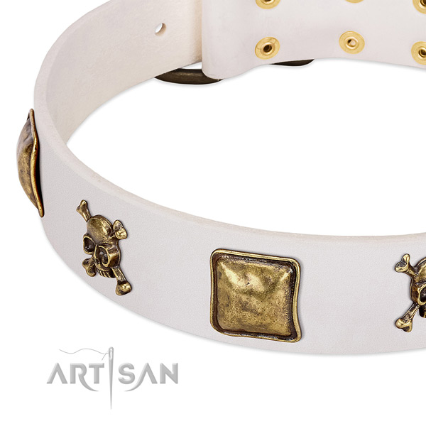 Amazing natural leather dog collar with durable adornments