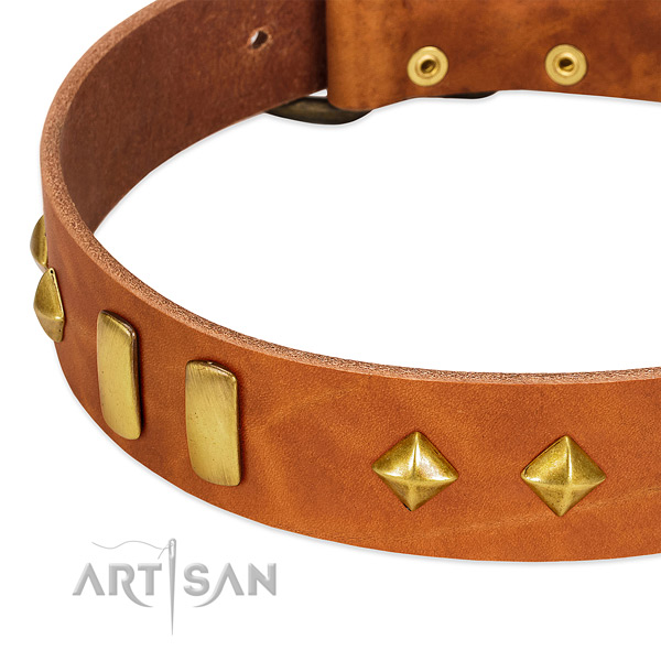 Comfortable wearing genuine leather dog collar with trendy studs
