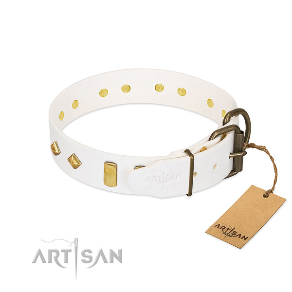 Soft to touch leather dog collar with rust resistant fittings