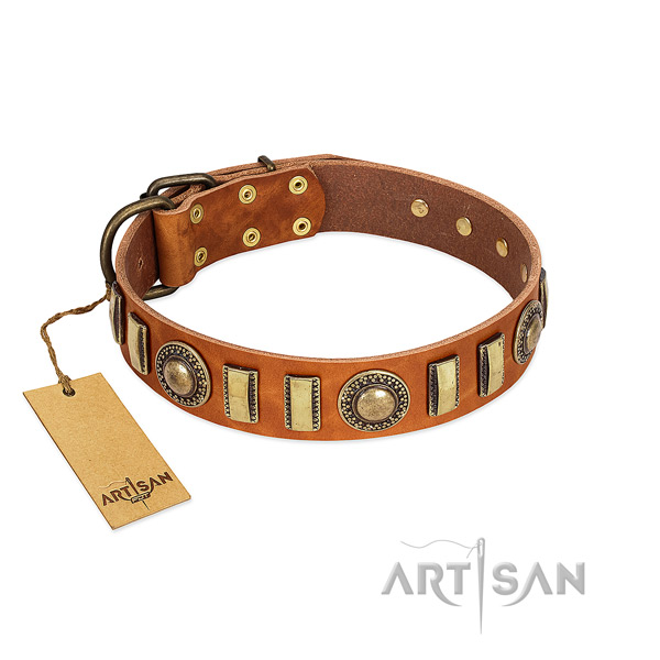 Embellished leather dog collar with durable D-ring