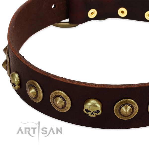Exquisite adornments on genuine leather collar for your doggie
