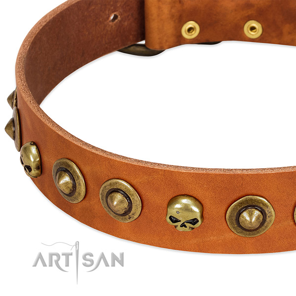 Impressive decorations on full grain natural leather collar for your four-legged friend