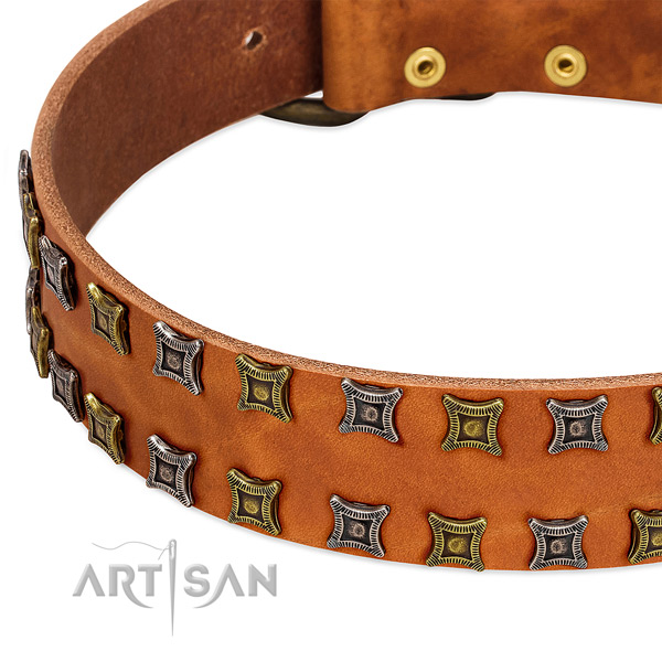 Flexible full grain natural leather dog collar for your beautiful canine