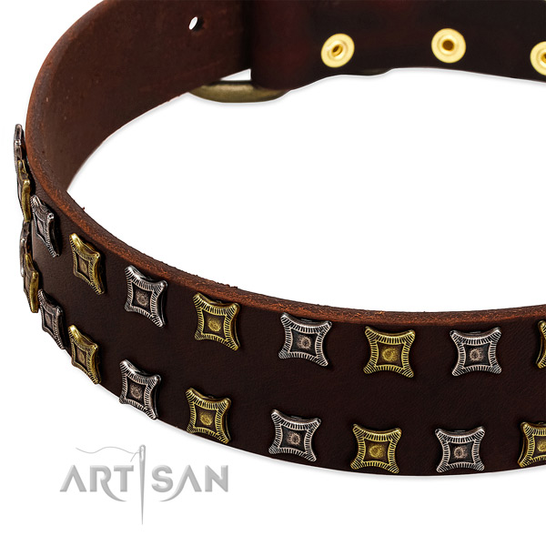 Durable full grain leather dog collar for your beautiful four-legged friend