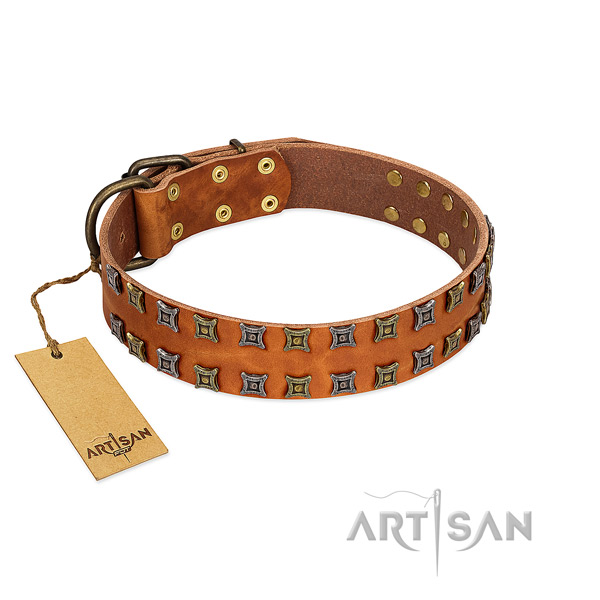 Strong genuine leather dog collar with studs for your doggie