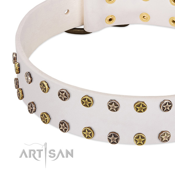 Designer studs on genuine leather collar for your pet