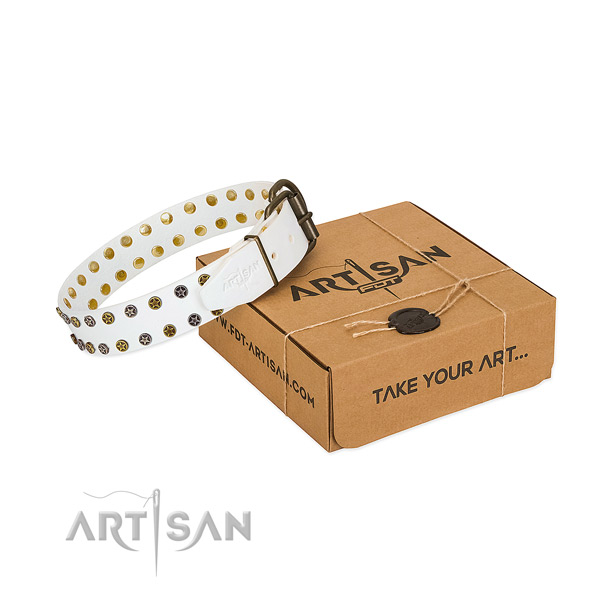 Trendy full grain natural leather dog collar with durable embellishments