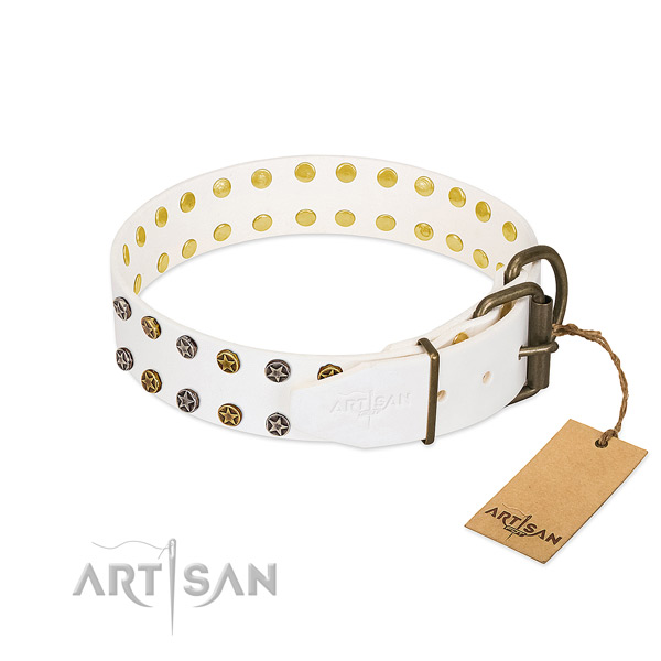 Natural leather collar with remarkable embellishments for your pet
