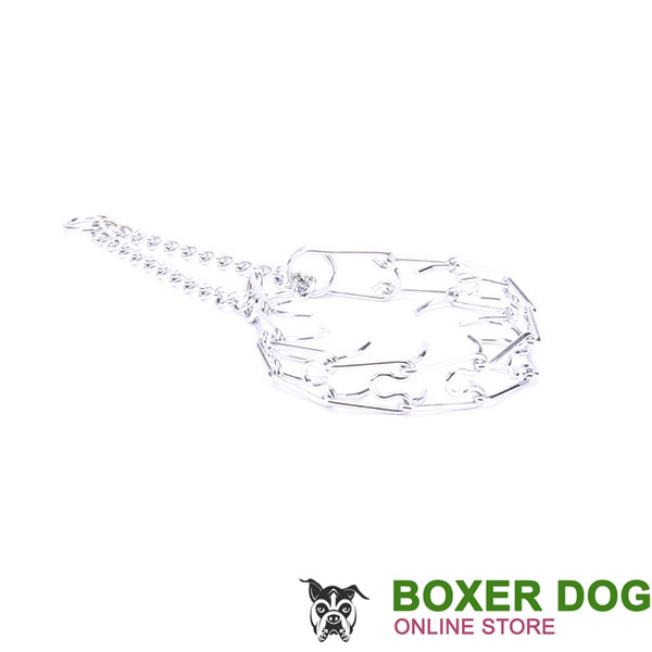 Chrome plated steel dog prong collar for poorly behaved dogs