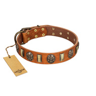 """Strike of Rock"" FDT Artisan Tan Leather Boxer Collar with Plates and Medallions with Skulls"