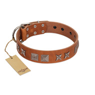 """Antique Figures"" FDT Artisan Tan Leather Boxer Collar with Silver-like Engraved Plates"