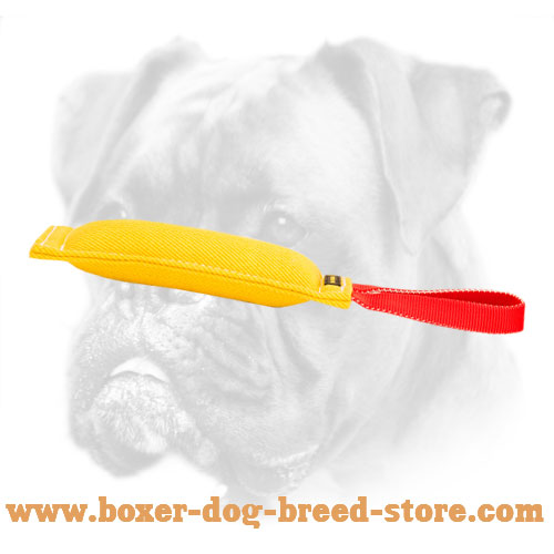 French Linen Boxer Bite Tug for Bite Work
