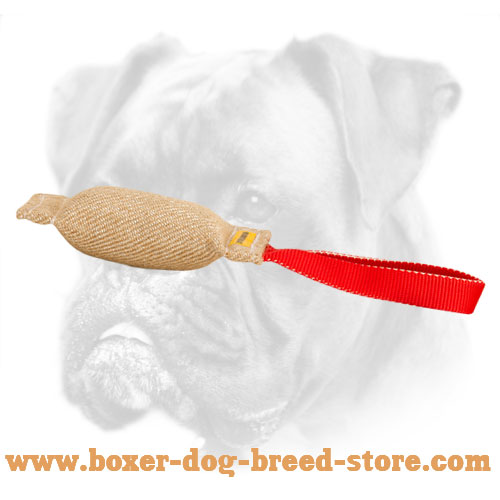 Boxer Puppy Soft Bite Tug For Puppy Training