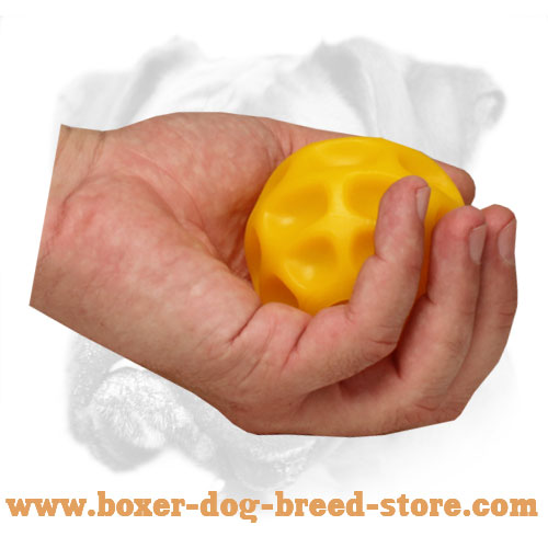 Safe Boxer Chewing Ball for Challenging Game