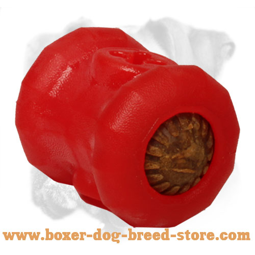 Classy Boxer Chewing Ball for Kibble Dispensing