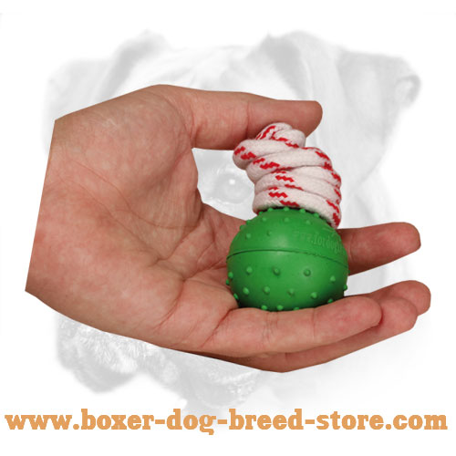 Rubber Boxer Bite Ball for Training in Water