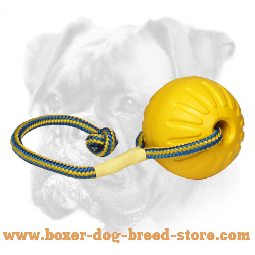 Safe Boxer Ball for Interactive Training