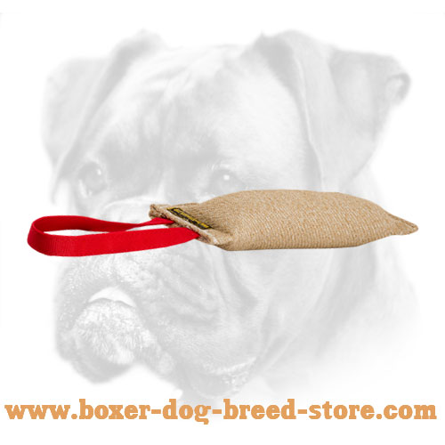 Puppy Boxer Bite Tag of Jute for Efficient Training