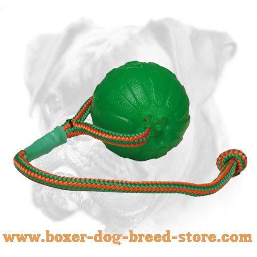 Unmatchable Boxer Ball for Interactive Training
