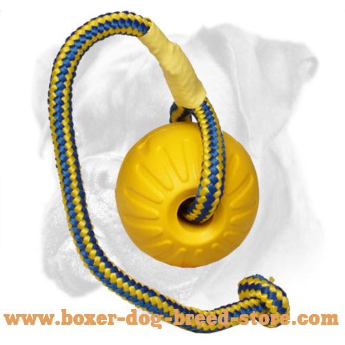 Lightweight Boxer Ball for Safe Training