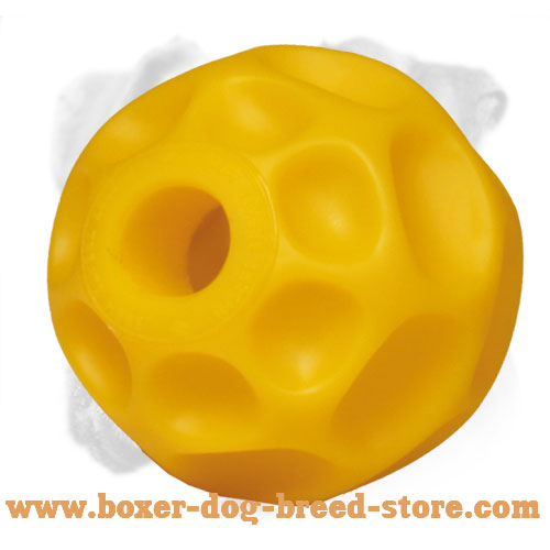 Best Boxer Tetraflex Treat Holder