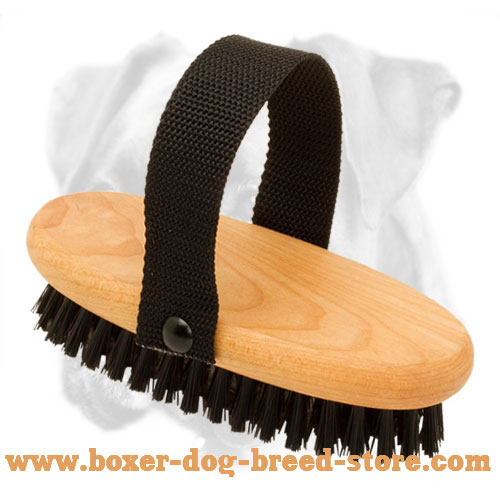 Effective Dog Grooming with Bristle Brush