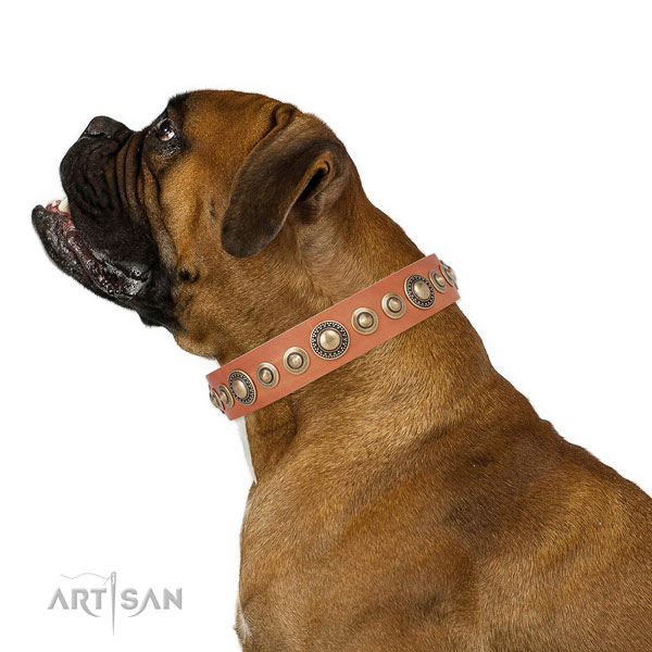 Rust-proof buckle and D-ring on leather dog collar for walking in style