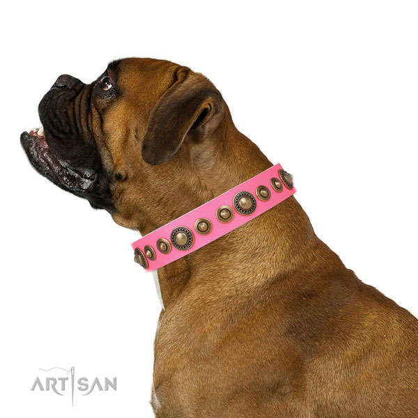 Rust-proof buckle and D-ring on natural leather dog collar for stylish walks