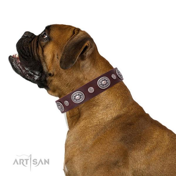 Corrosion proof buckle and D-ring on genuine leather dog collar for everyday walking