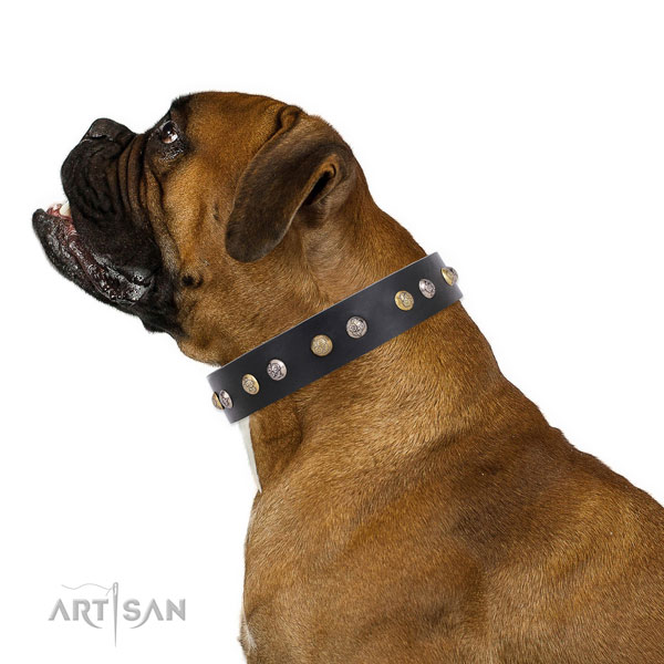 Genuine leather dog collar with rust resistant buckle and D-ring for handy use