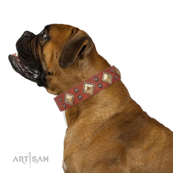Comfy wearing adorned dog collar made of strong genuine leather
