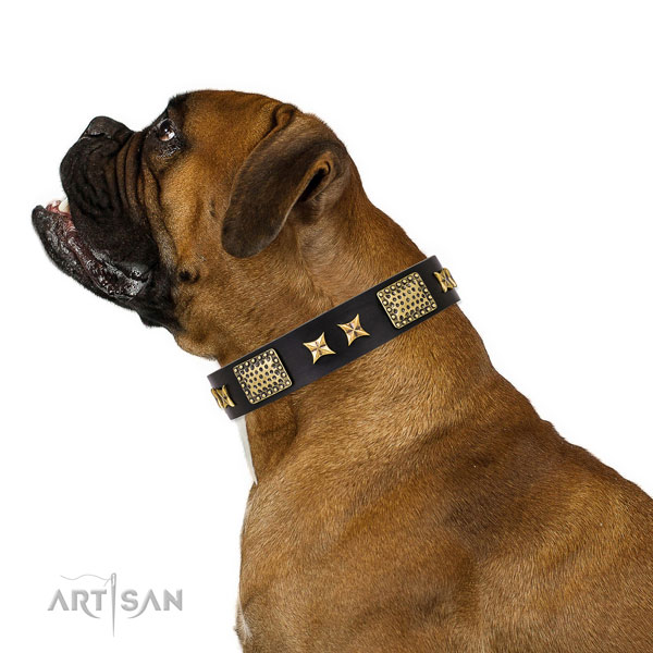 Comfy wearing dog collar with inimitable studs