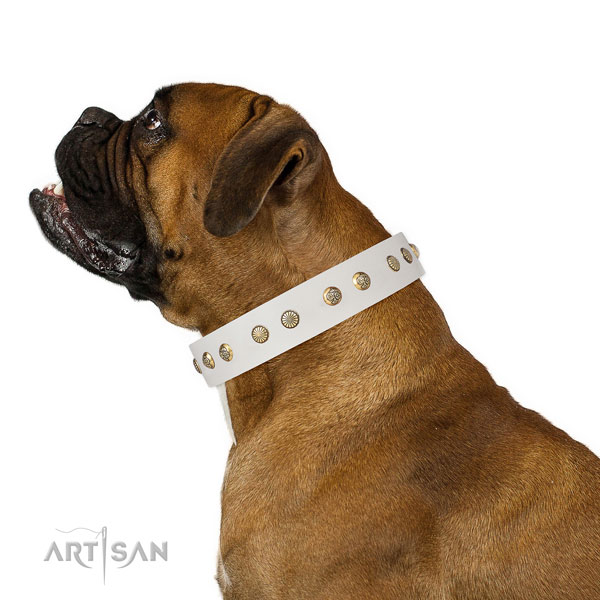 Stunning adornments on handy use full grain natural leather dog collar