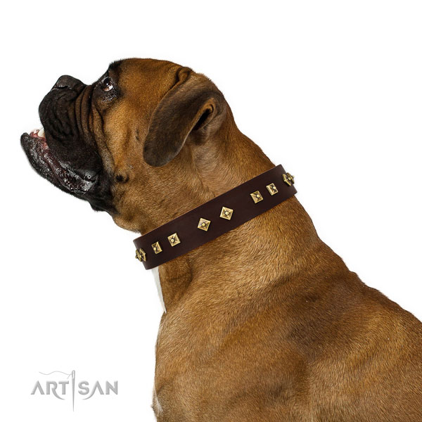 Awesome studs on easy wearing genuine leather dog collar