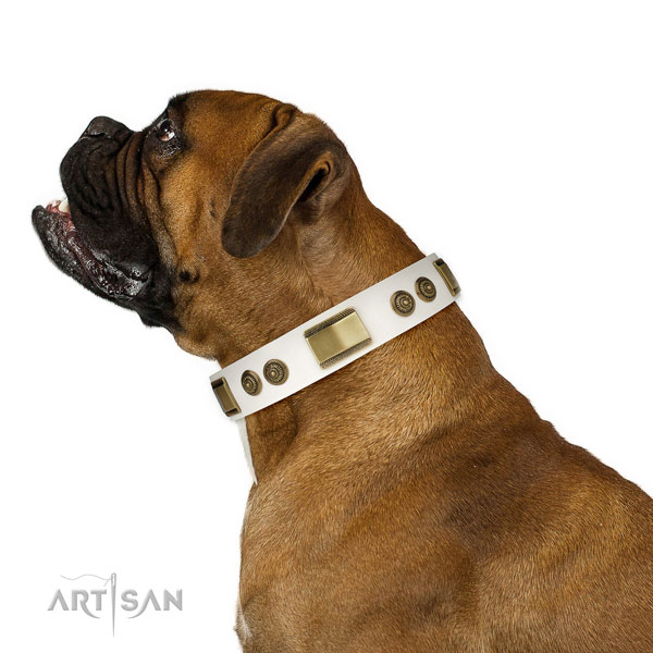 Best quality daily walking dog collar of genuine leather