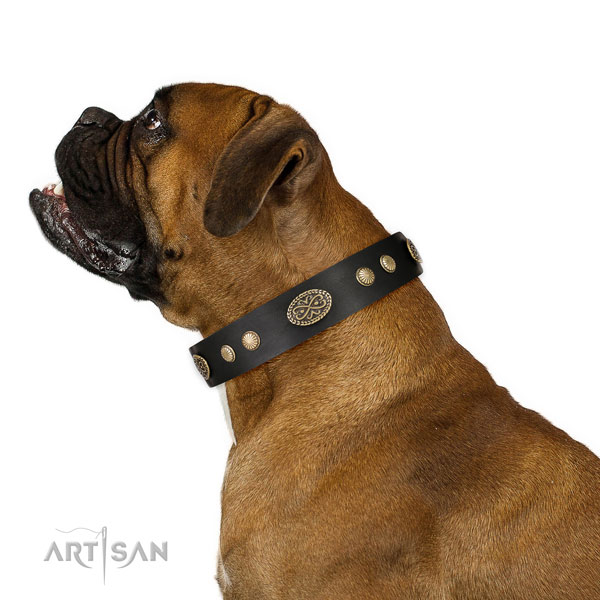 Corrosion proof buckle on full grain natural leather dog collar for walking