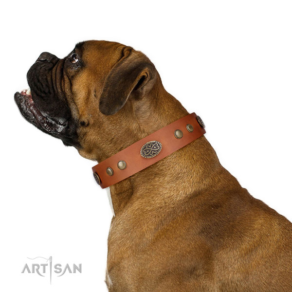 Corrosion proof fittings on leather dog collar for daily walking