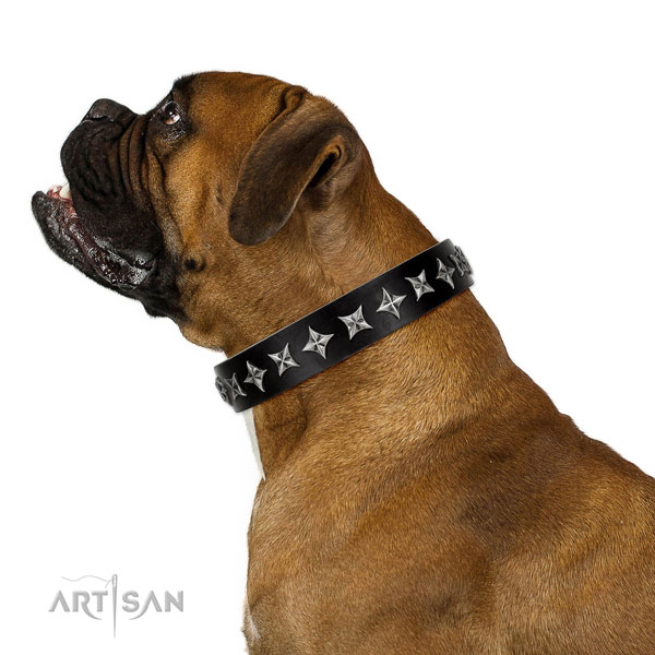 Walking embellished dog collar of high quality leather