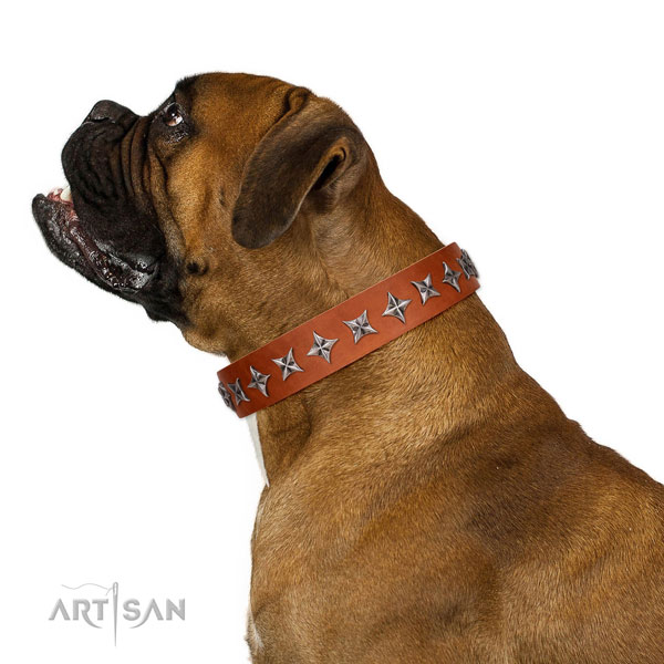 Reliable genuine leather dog collar with fashionable adornments