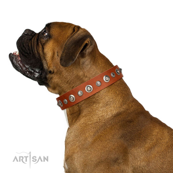 Best quality genuine leather dog collar with stylish adornments